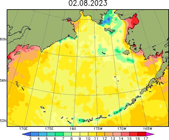 Карта температуры воды в Беринговом море